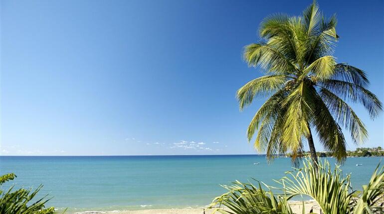 Foto - Tobago - Barbados