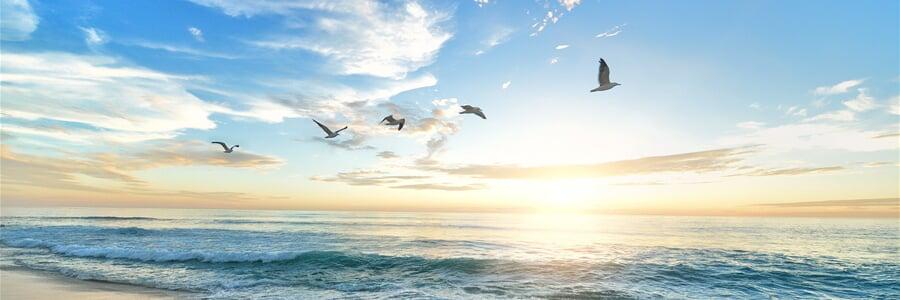 Slunečné pobřeží, perla Bulharska