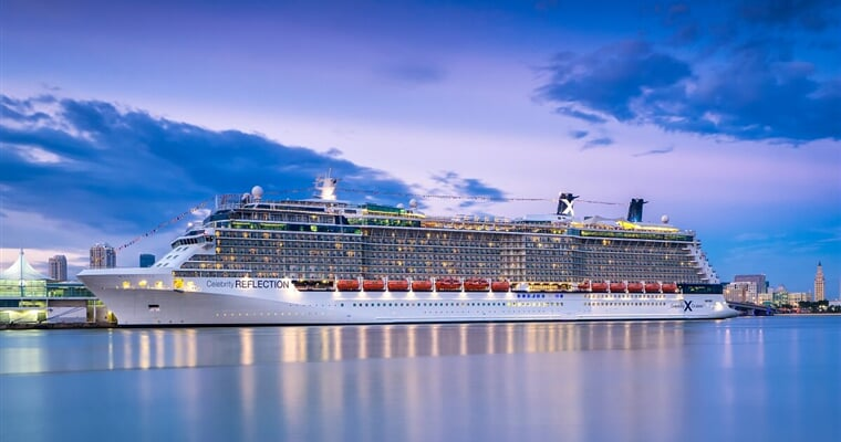 Celebrity Reflection (1)
