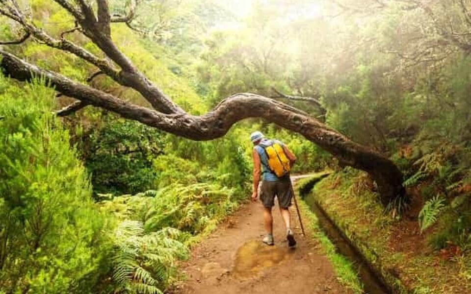 Foto - Pěší turistika na Madeiře