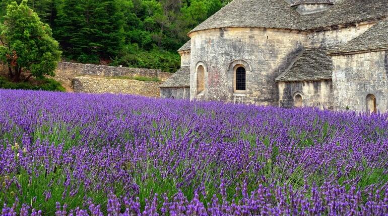 Poznávací zájezd Francie - Provence - Klášter Senanque